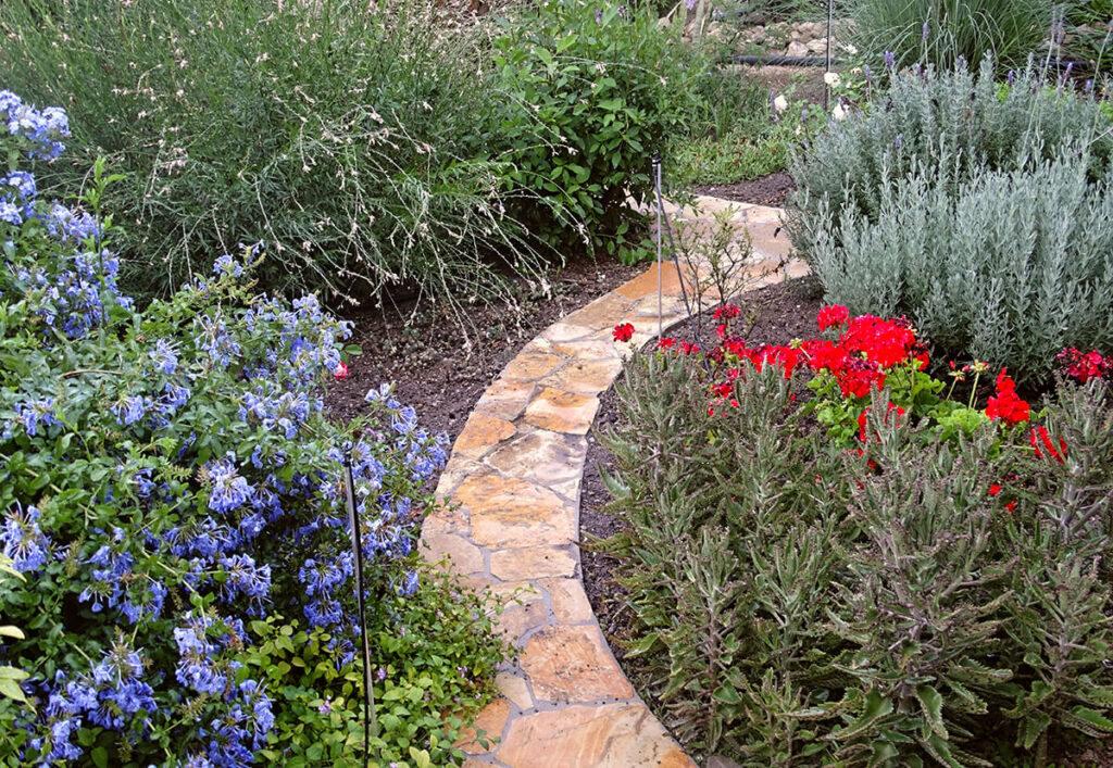 villa-dianthe-garden-2020-07