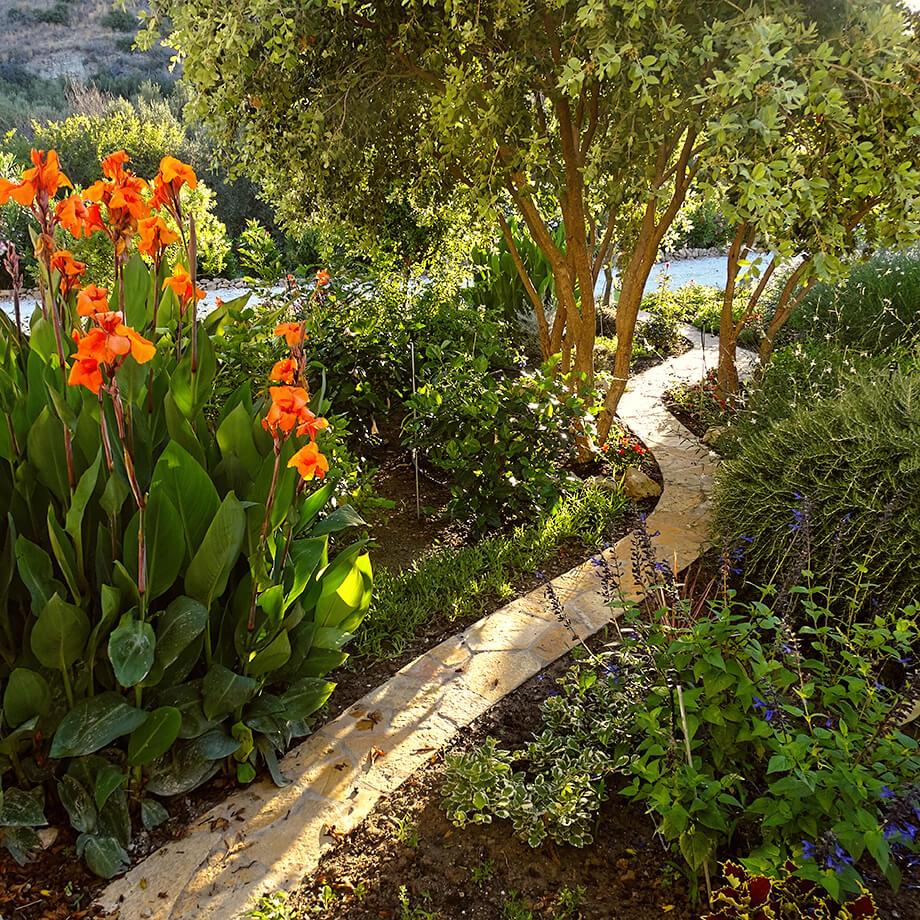 villa-dianthe-garden-2020-11
